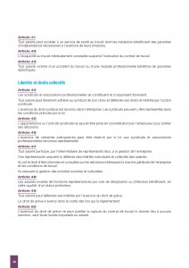 RAPPORT BADINTER 2016-page-010 (1)